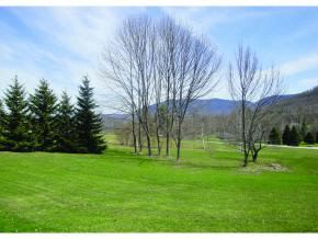 Photo of 169 Congdon Road, Danby, VT 05739 (MLS # 4507081)