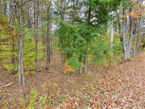 Photo of 00 North Village and Waldron Hill Road, Warner, NH 03278 (MLS # 4726084)