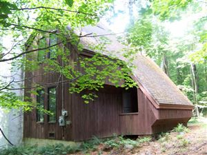 Photo of 322 Access Road, Rochester, VT 05767 (MLS # 4720087)