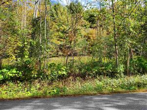 Photo of Lot 5 Monument Hill Road, Hubbardton, VT 05732 (MLS # 4768096)