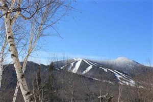 Photo of 116 Snows Mountain Road, Waterville Valley, NH 03215 (MLS # 4692111)