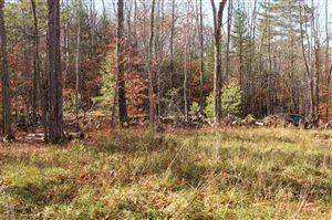 Tiny photo for 01 Newfield Road, Wakefield, NH 03872 (MLS # 4727113)