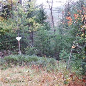 Photo of Cortina Street, Moultonborough, NH 03254 (MLS # 4720128)