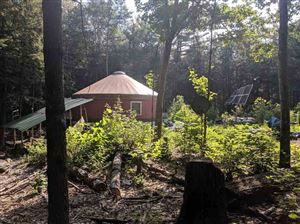 Photo of 289 Chaisson Road, Plymouth, NH 03264 (MLS # 4769131)