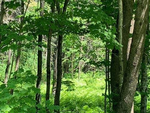 Photo of 0 Carlton Hill Road, Woodstock, VT 05091 (MLS # 4670150)