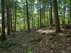 Photo of 00 Moultonborough Neck Road, Moultonborough, NH 03254 (MLS # 4723184)
