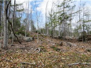 Photo of Lot 3 Stevens Brook Road, Sutton, NH 03278 (MLS # 4428201)