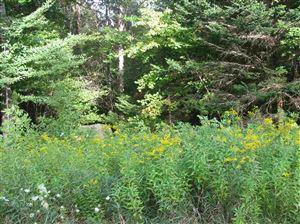 Photo of Lot 1 Cortina Country Road, Mendon, VT 05701 (MLS # 4778202)