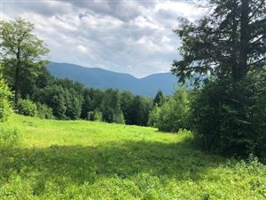 Photo of Old Maple Lane Lot 1A, Danby, VT 05739 (MLS # 4766209)