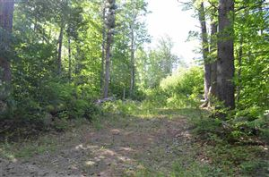 Photo of Duck Pond Lane, Warner, NH 03278 (MLS # 4700239)