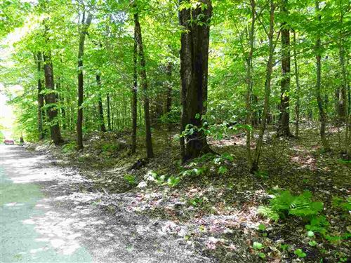 Photo of 00 Old Tiffany Road, Mount Holly, VT 05758 (MLS # 4639244)