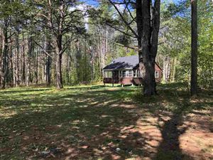Photo of 49 Town House Road, Effingham, NH 03882 (MLS # 4753246)