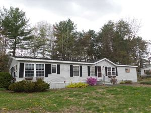 Photo of 23 Stacey Drive, Hopkinton, NH 03229 (MLS # 4750260)