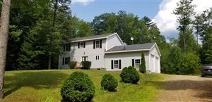 Photo of 28 Dearborn Road, Hill, NH 03243 (MLS # 4767280)