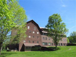 Photo of 21710 Maxham Meadow Way #1A, Woodstock, VT 05091 (MLS # 4748300)