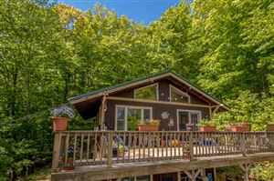 Photo of 29 Granite Ledge Road, Bartlett, NH 03838 (MLS # 4756309)