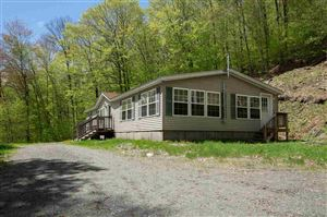 Photo of 100 Emery Drive, Dummerston, VT 05301 (MLS # 4753316)