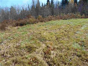 Photo of Stiles Farm Road, Whitefield, NH 03598 (MLS # 4782332)