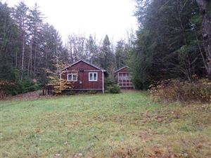 Photo of 42 Aspen Lane, Danbury, NH 03230 (MLS # 4730357)