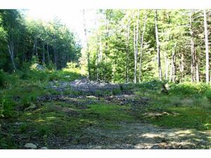 Photo of 00 Mink Hill Lane, Warner, NH 03278 (MLS # 4496365)