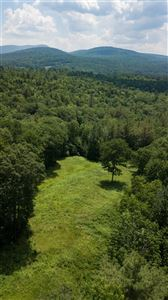 Photo of 162 Dame Hill Road, Orford, NH 03777 (MLS # 4764403)
