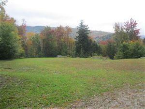 Photo of 1 LOMBARD HILL Road, Killington, VT 05751 (MLS # 4767415)