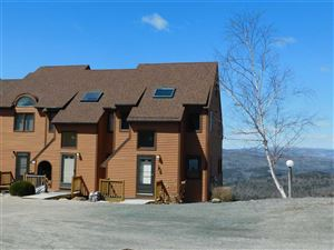 Photo of 84 Richardson Trail #21, Campton, NH 03223 (MLS # 4737443)