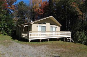 Photo of 16 Sunne Village Lane, Dover, VT 05356 (MLS # 4728462)