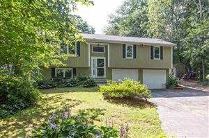 Photo of 19 Parmenter Road, Londonderry, NH 03053 (MLS # 4771477)