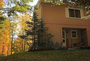Photo of 145 Fox Hill Road #31, Stowe, VT 05672 (MLS # 4771488)
