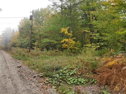 Photo of 0 Pratt Bridge Road, Jamaica, VT 05143 (MLS # 4831490)