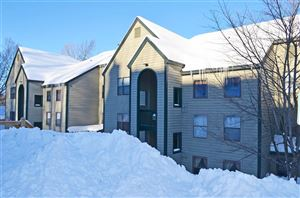 Photo of 64 Fowler Road #Winterplace Q-103, Ludlow, VT 05149 (MLS # 4745498)