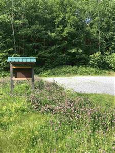 Photo of 7748 Route 100 Route, Readsboro, VT 05350 (MLS # 4760534)