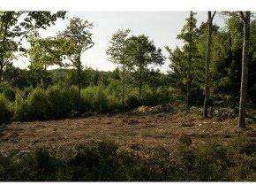 Photo of 18-D Crescent Drive, Bow, NH 03304 (MLS # 4746536)