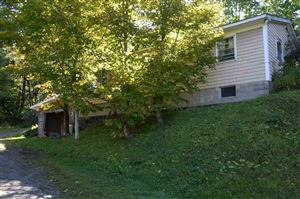 Photo of 83 Route 100 Road, Wilmington, VT 05363 (MLS # 4776559)