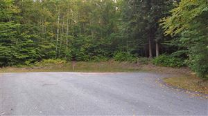 Photo of 114-47 Mansion Hill Drive Road, Lincoln, NH 03251 (MLS # 4659588)