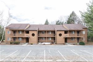 Photo of 13 DUCK POND ROAD #1, Lincoln, NH 03251 (MLS # 4747610)