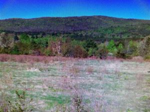 Photo of 00 Maple Hill Road, Mount Holly, VT 05758 (MLS # 4765637)