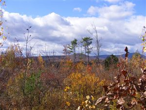 Photo of Lot 2 Little Hill Road, Webster, NH 03303 (MLS # 4492642)
