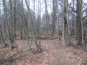Photo of 750 Sugarwood Hill Road, Rutland Town, VT 05701 (MLS # 4744655)
