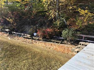 Photo of 170 Pine  Point Road, New Durham, NH 03855 (MLS # 4712659)