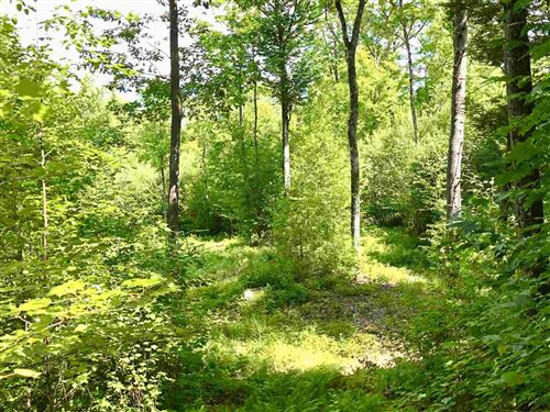 Photo of 00 Emery Rd/Webster Lake Road, Andover, NH 03216 (MLS # 4733661)