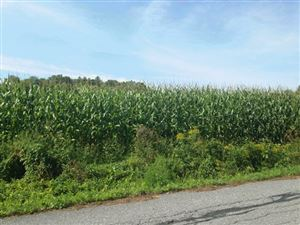 Photo of TBD Park Street Extension Street, Brandon, VT 05733 (MLS # 4744662)