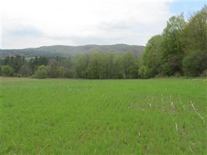 Photo of 2500 US Route 7 North, Rutland Town, VT 05701 (MLS # 4744663)