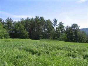 Photo of 3 Old Farm Road Road, Pittsford, VT 05763 (MLS # 4760738)