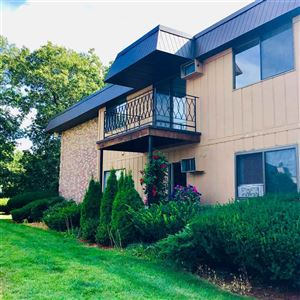 Photo of 13 Strawberry Bank Road #21, Nashua, NH 03062 (MLS # 4770738)
