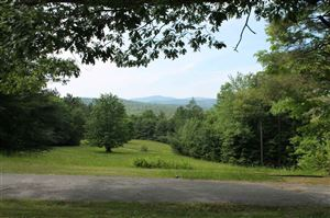 Photo of 11 Wilderness Park Road, Sunapee, NH 03782 (MLS # 4760740)