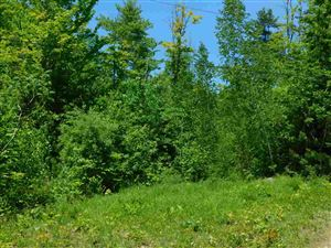 Photo of Lot 1 Upper Beech Hill Road, Campton, NH 03223 (MLS # 4669775)