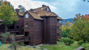 Photo of 57 High Ridge Road #B6, Killington, VT 05751 (MLS # 4764787)