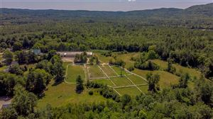 Photo of 251 Wentworth Road, Brookfield, NH 03872 (MLS # 4768788)